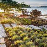Growing Perennials And Garden Care