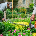 Irrigation And Sprinkler Systems In Landscaping Applications